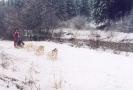 Inverno_5