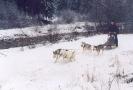 Inverno_7